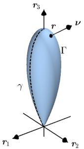 amoeba2a